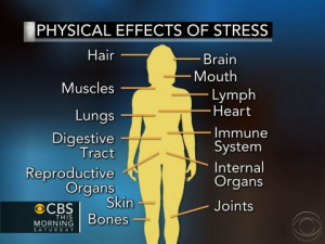 Scary Effects of Stress | Stillwaters Healing Center